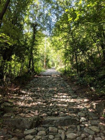Antica Mulattiera (Old Mule Path) to the Sacra.